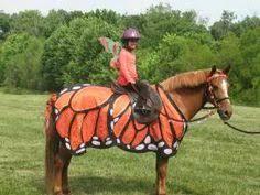 Halloween Costumes Horse Horse Halloween Costume Halloween Horse Show Horse