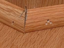 installing quarter moldings