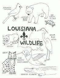 Ca State Flag Louisiana State Flag Coloring Page Many Interesting Cliparts