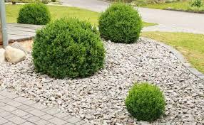 landscaping pebbles look pretty u2014 bistrodre porch and landscape