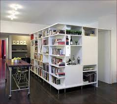 Bookcases As Room Dividers Bookcase Room Divider Part 27 Dna Open Bookcase Roomdivider
