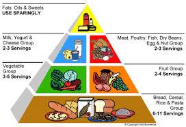 myplate vs food pyramid hoerdemannc10
