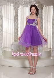 cheap 8th grade graduation dresses decorate straps 2013 cheap graduation dresses for 8th grade in ladybank