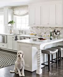 ideas for kitchen renovations kitchen and decor 47 best white kitchen ideas decor images on pinterest kitchen