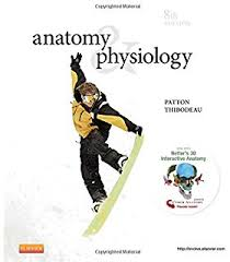 Study Anatomy And Physiology Online Study Guide For Anatomy U0026 Physiology 8e 9780323083706 Medicine