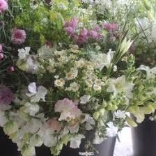 132 best june seasonal flower delivery bouquets and wedding