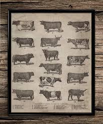best 25 farm decorations ideas on pinterest farm animal party