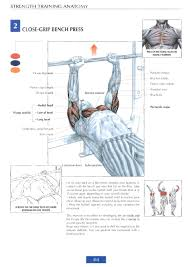 strength training anatomy review sports science co