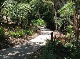 Quail Botanical Gardens Free Tuesday San Diego Botanic Garden Kpbs