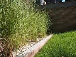 image amenagement jardin amenagement de jardin paysager projet daménagement de jardin et