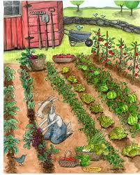 summer wall art 5 x 7 print of a watercolor vegetable garden