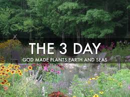 the 7 days of creation by lilly bryant