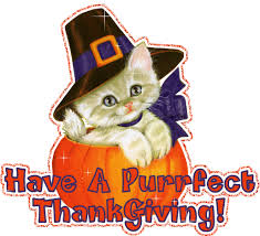 cats graphics images pictures happy thanksgiving wallpapers