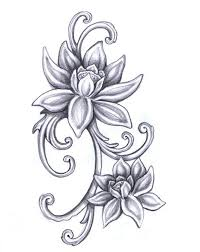 drawings of flowers free download clip art free clip art on
