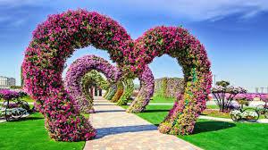 dubai miracle garden showcases 45 million flowers youtube