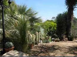 Quail Botanical Gardens Free Tuesday San Diego Botanical Garden Quail Botanical Garden San Diego