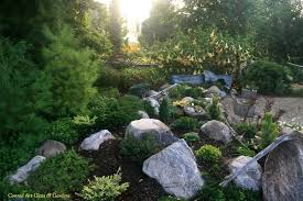 looking for inspiration for the miniature conifer rock garden