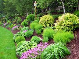98 surprising how to landscape a hill picture inspirations home