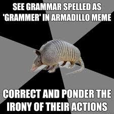 Ponder Meme - see grammar spelled as grammer in armadillo meme correct and