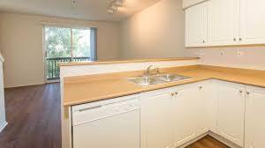 artisan square apartments reviews in northridge 19200 nordhoff