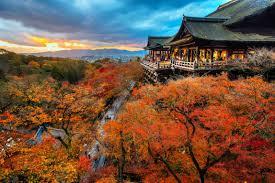the world u0027s best photos 100 autumn colors color season seeds autumn and design