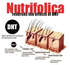 nutrifolica combo hair regrowth treatment and hair loss shampoo