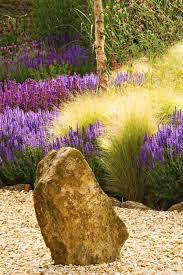 fleurs vivaces rustiques les graminées 5 superbes variétés graminées plein soleil et