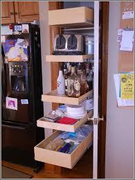 Under Kitchen Sink Cabinet Under Kitchen Sink Cabinet Organizer Home Design Ideas