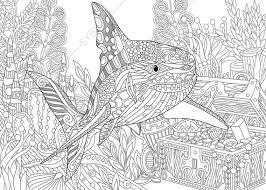 coloring shark treasure coloringpageexpress
