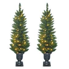 sylvania 2 pack 4 ft outdoor pine pre lit decorative artificial tree