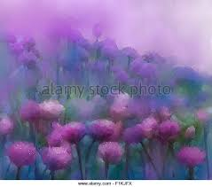 oil painting flower stock photos u0026 oil painting flower stock