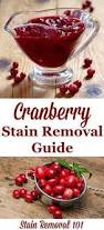 Stain Remover For Upholstery Pickle Juice Stain Removal Guide Pickling Juice And Clean Freak