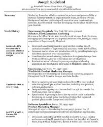 Business Manager Resume Sample by Samples Of Marketing Resumes Marketing Resume Template