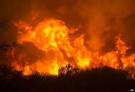 Wildfire Rap Song by Noah Sawicki Noahelyse Twitter