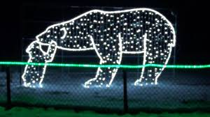 Lights At The Zoo by Christmas At The Zoo Youtube