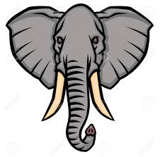 head of an elephant with large tusks vector illustration royalty
