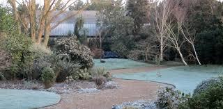 the winter garden john brookes raves u0026 rants