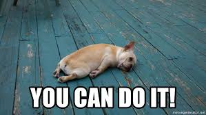 Exhausted Meme - you can do it exhausted dog meme generator
