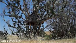 backyard treehouse a perched home for escape introspection youtube
