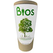 Vase For Ashes How To Choose Biodegradable Cremation Containers