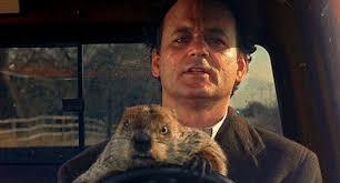 groundhog critics