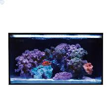 nuvo fusion 20 gallon saltwater aquarium kit with skkye led bulk