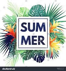 Tropical Design Green Botanical Summer Tropical Design Palm Stock Vector 601877783