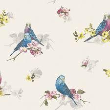 bird wallpaper statement budgie blue grey floral birds wallpaper clearance