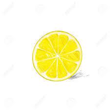 lemon half cut circle citrus fruit color sketch draw isolated