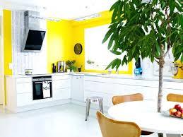 cuisine jaune et blanche cuisine blanc jaune cethosia me