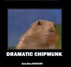 Dramatic Squirrel Meme - dramatic chipmunk dramatic chipmunk know your meme