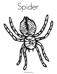 Spider Color Pages Spider Coloring Pages Twisty Noodle by Spider Color Pages