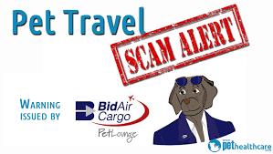 bid air new pet travel scams pethealthcare co zapet travel scam alerts