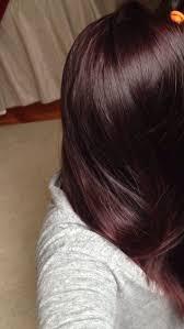 brown plum hair color dark plum brown hair google search anything everything